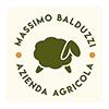 logo_massimobalduzzi3